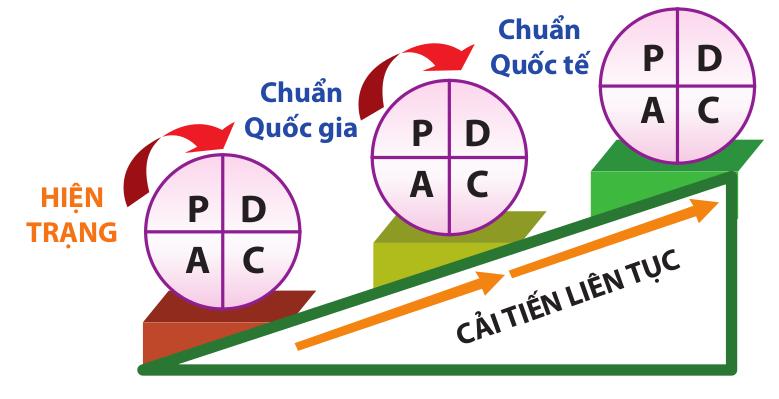 iso-9001-la-gi-PDCA