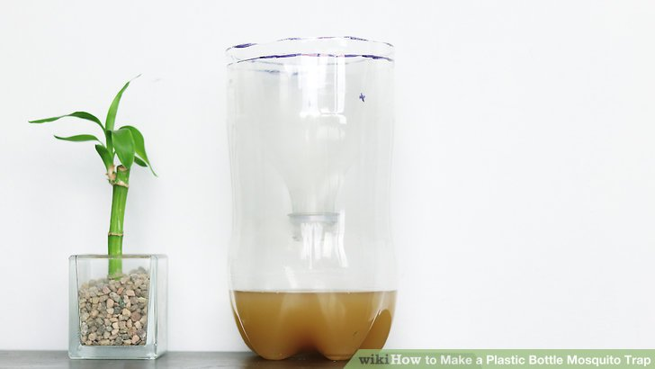 Cách làm bẫy muỗi bằng vỏ chai nhựa: Đơn giản mà hiệu quả!