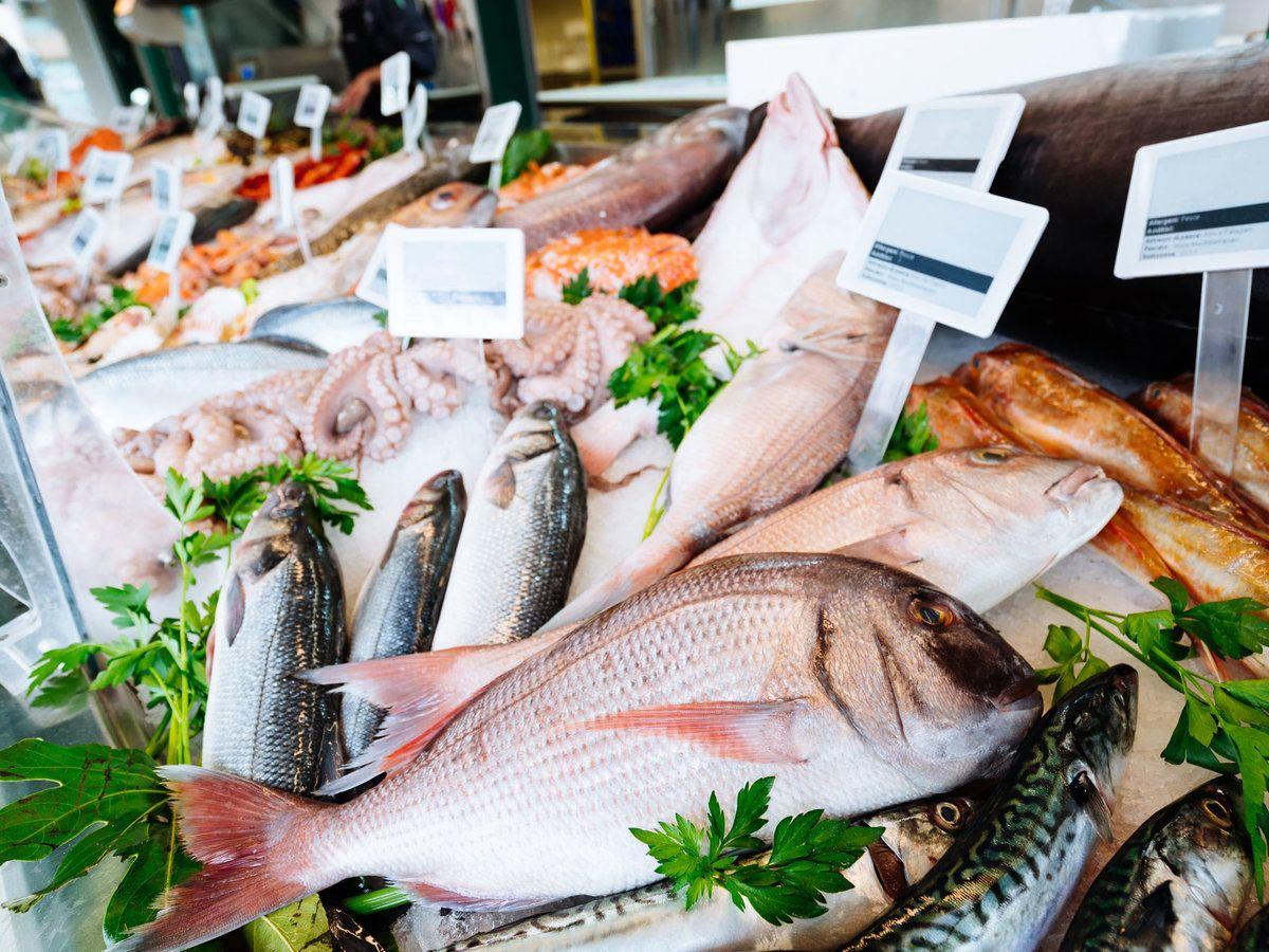 Loài cá nào dễ bị hóc xương nhất khi ăn?