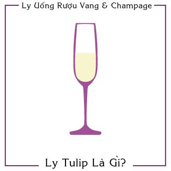 Mua ly uống rượu (Vang & Champage):