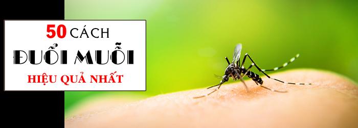 Đuổi muỗi: 50+ CÁCH đã HIỆU QUẢ còn DỄ lại NHANH